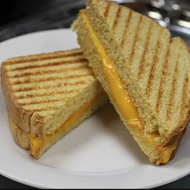 Panini Grilled Cheese Sandwich